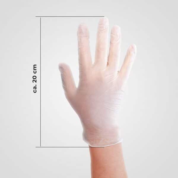 Eine Hand mit dem Vinylhandschuh. Daneben das Längenmaß = 20cm